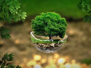 Сохранить Землю для потомков и накормить современников: что еще может агроэколог?