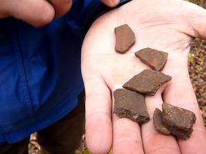 Остатки керамики домонгольского периода нашли археологи в парке «Швейцария»