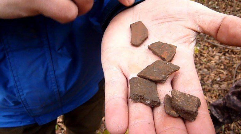 Остатки керамики домонгольского периода нашли археологи в парке «Швейцария» - фото 1