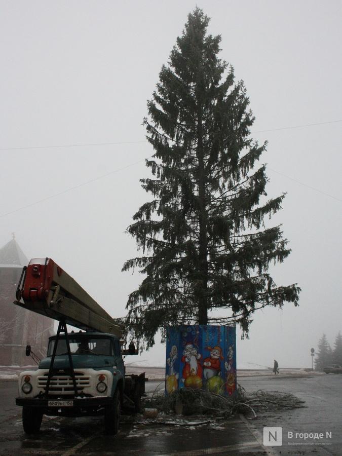 Главную нижегородскую новогоднюю елку снова поменяют - фото 2