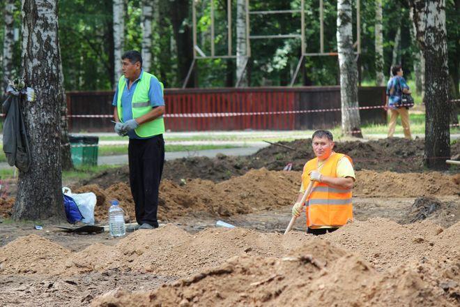 Уникальный городок и ценные деревья: как преобразится парк Пушкина - фото 34