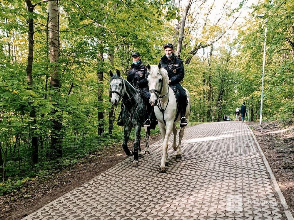 Количество коронавирусных патрулей увеличат в Нижегородской области в хорошую погоду - фото 1