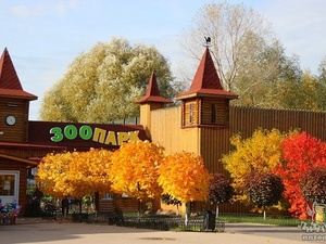 Книгу к 15-летию зоопарка «Лимпопо» представят в Нижнем Новгороде