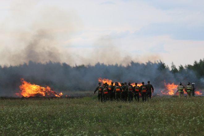 На вертолетах и квадроциклах: пожарные боролись с условным лесным возгоранием под Дзержинском - фото 6