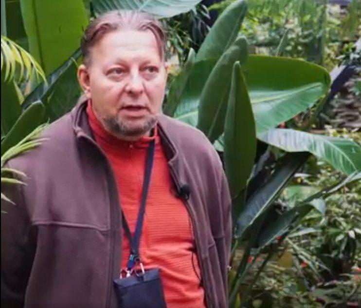 Главный ботаник ННГУ вспомнил, как «простые нижегородцы» засаживали «Швейцарию» - фото 1