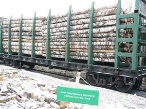 Нижегородские таможенники возбудили дело на предпринимателя, вывозившего лес в Китай