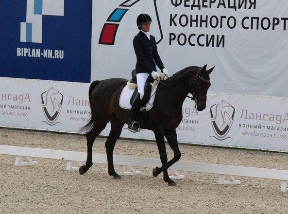 Взаимопонимание и грация: всероссийские соревнования по выездке стартовали в Нижнем Новгороде - фото 11