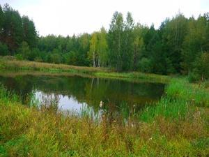 Три трупа достали из водоемов Нижегородской области на прошлой неделе