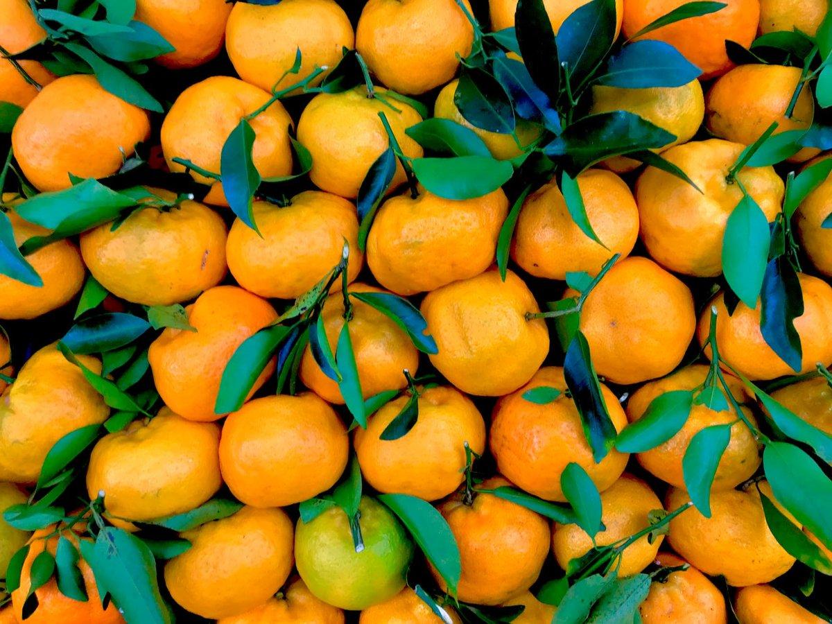 Как выбрать самые вкусные мандарины: рекомендации от Росконтроля - фото 1