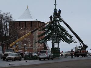 На площади Минина и Пожарского устанавливают елку (ФОТО)