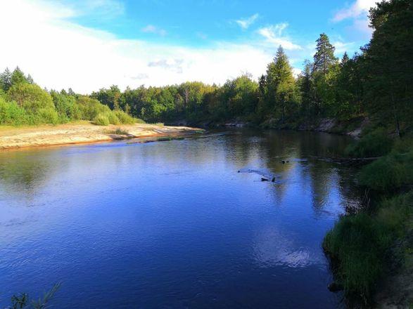 Гранты для рек и озёр - фото 1