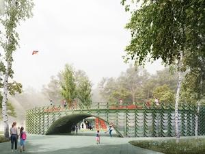 Курсы плотничества предложили проводить в детском центре в парке «Швейцария»