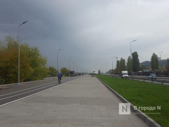 Велодорожка и сады на бетонном склоне: новая жизнь набережной Гребного канала - фото 2