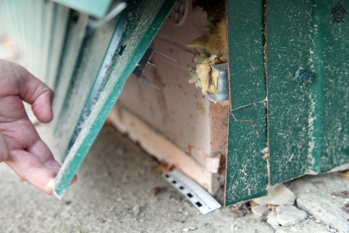Воротынских чиновников обвиняют в предоставлении некачественного жилья сиротам - фото 1