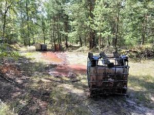 Дело возбуждено из-за разлитых в дзержинском лесу химотходов