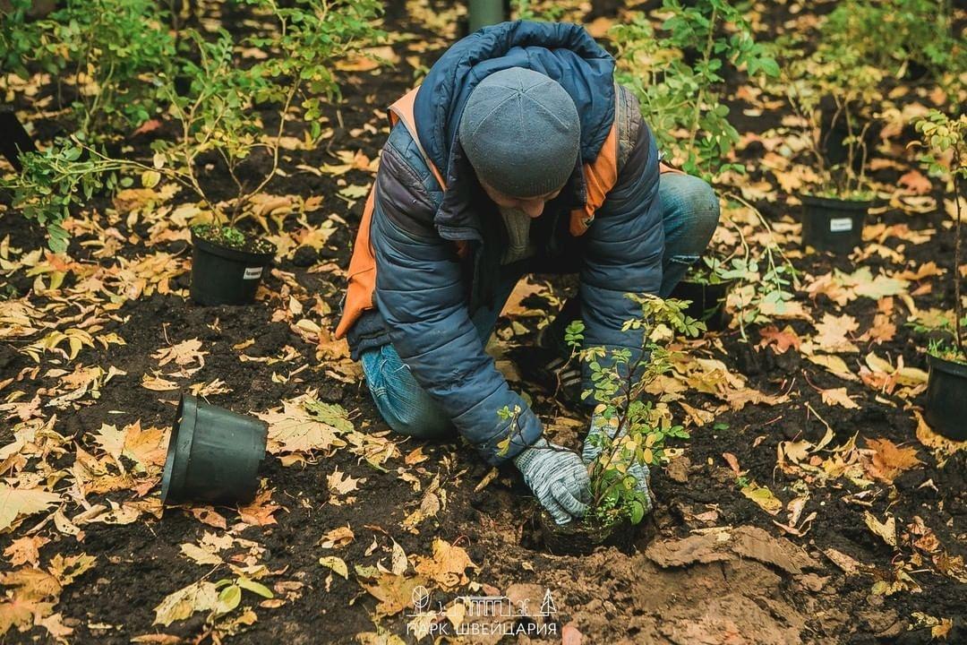Благоустройство сквера «Первых маевок» в нижегородском парке «Швейцария» завершено - фото 4