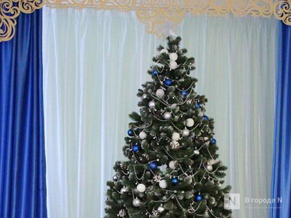 Искусственная или живая: в Роскачестве рассказали, как выбрать елку к Новому году - фото 1