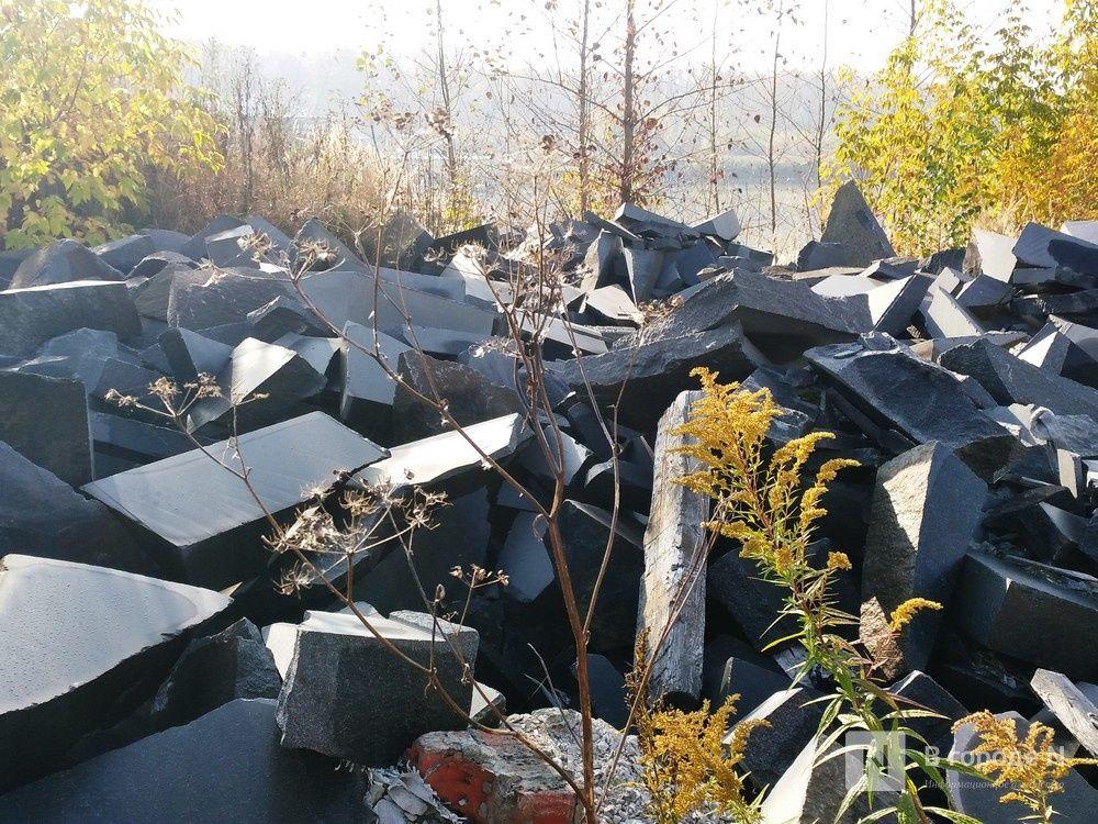 Нижегородская Дума намерена пять участков у Шуваловского канала передать в областную собственность - фото 1