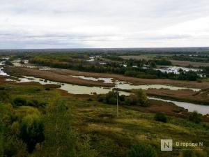 Мини рок-концерт в поддержку признания Артемовских лугов природным парком состоится в Нижнем Новгороде
