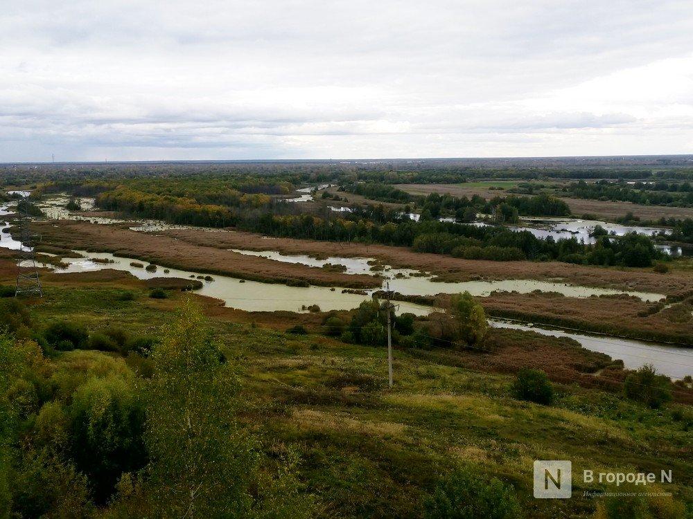 Жители Кстовского района высказались против строительства дороги в Артемовских лугах - фото 1