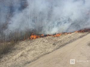 Высокая пожароопасность лесов сохранится в Нижегородской области до 3 июля