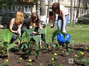 39 школьных кооперативов появятся в селах Нижегородской области