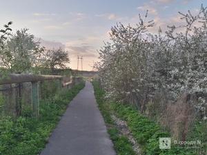 Селяне vs горожане: кто более удовлетворен жизнью в Нижегородской области