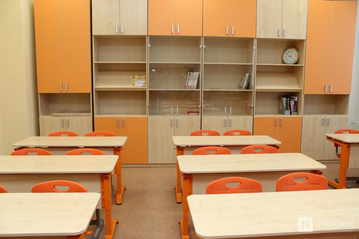 Нижегородские школы определили платформы для дистанционного обучения - фото 1