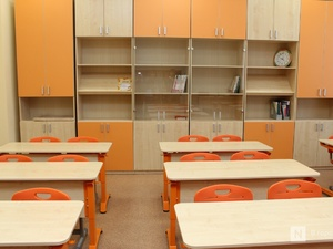Нижегородские школы определили платформы для дистанционного обучения