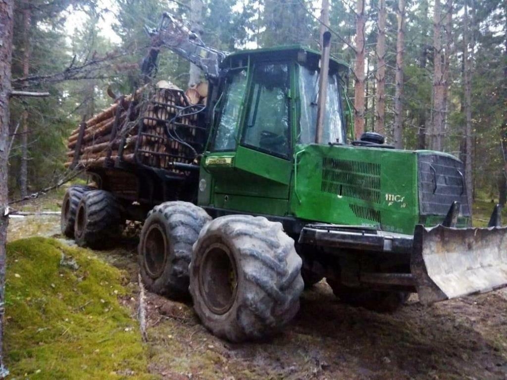 Деревья на 17 млн рублей незаконно вырубил предприниматель в Уренском районе - фото 1