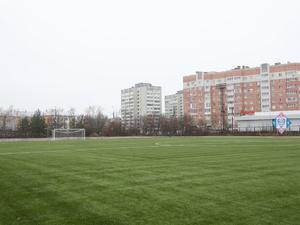 Ревизию спортивных объектов проведут в Нижегородской области